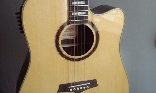 گیتار آکوستیک کم نظیر