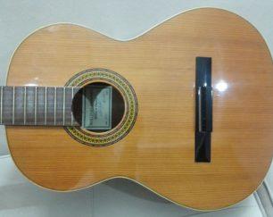 گیتار آنتونی سانچز۱۰۰۵
