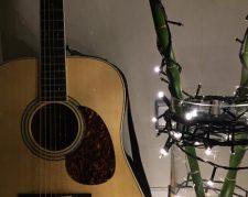 گیتار آکوستیک Cort earth100RW NAT