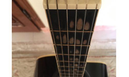 گیتار مسترورک پیکاپ دار