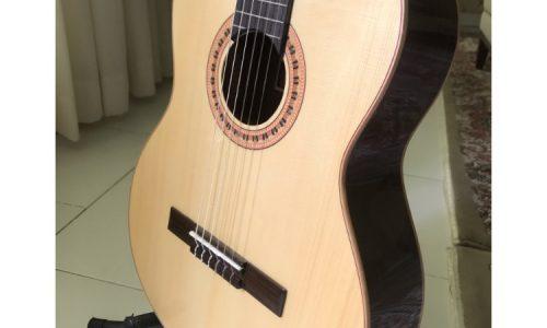 گیتار مانوئل رودریگز C10 نو