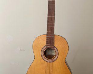 گیتار sl-35