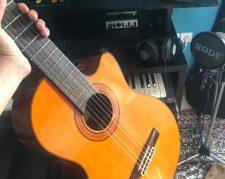 گیتار مارک معروف آریا ak80 پیکاپ دار اصلی