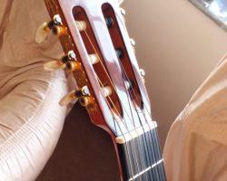 گیتار حرفه ای آلمانزا مدل cedro435