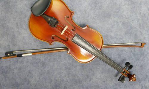 ویولن مدل TF 00800 سایز ۳٫۴ به همراه هارد کیس