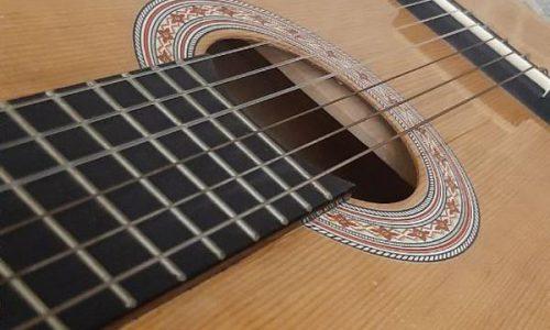گیتار خوش صدای گودمن