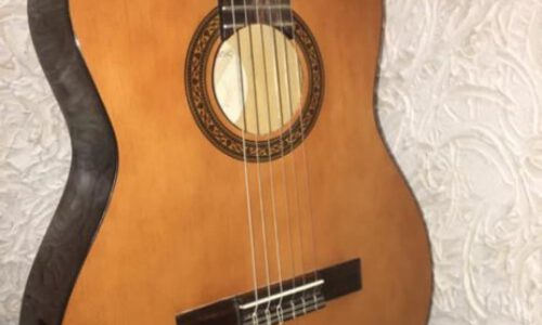 گیتار هافنر ۲۰۴