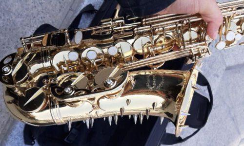 saxophone alto chateau vch-221l signature