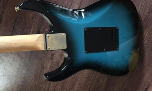 گیتار الکتریک fernandes