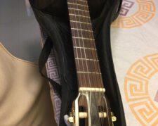 گیتار کلاسیک آموزشی ژاپنی آریا مدل AK40