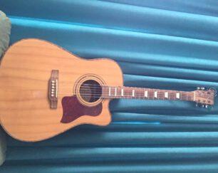 گیتار آکوستیک پیکاپ دار
