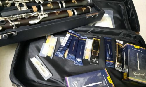 Performance Series Clarinet JCL 1100DS